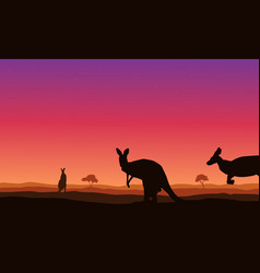 beauty landscape kangaroo on hill silhouettes vector image