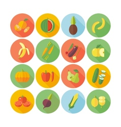 Flat design icons for fruits and vegetables vector image