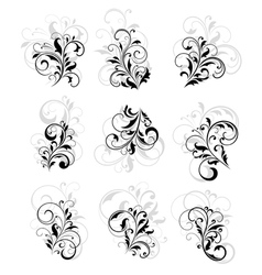 flourish design elements vector image