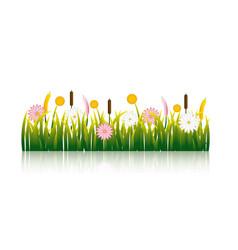 Garden flowers and grass field vector