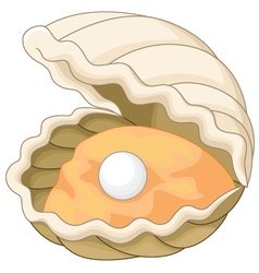 Oyster with a pearl vector image