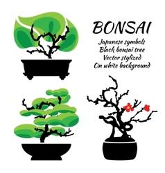 Bonsai set on a white background vector image
