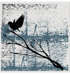 grunge bird background vector image vector image