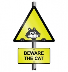 beware the cat vector image vector image
