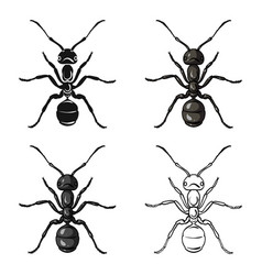Ant icon in cartoon style isolated on white vector