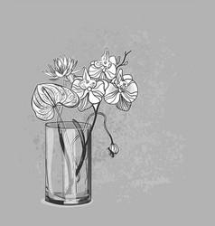 Sketch flower background card vase orchid vector