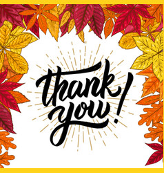 thank you hand drawn lettering phrase on vector image