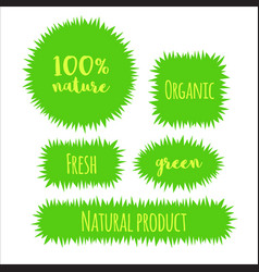 flat grass banner label bubble template vector image