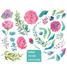 watercolor beautiful floral collection vector image vector image