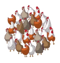 Birds color chicken group isolated on white vector image