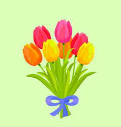 Bouquet of colorful tulips bound with blue ribbon vector