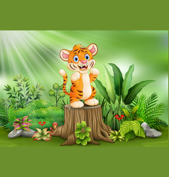 Cartoon of a tiger standing on tree stump with gre vector