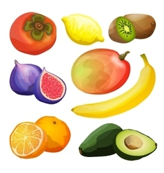 Exotic Fruits Set vector image