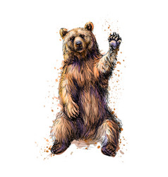 friendly brown bear sitting and waving a paw from vector image