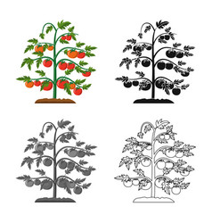 Isolated object of greenhouse and plant sign vector
