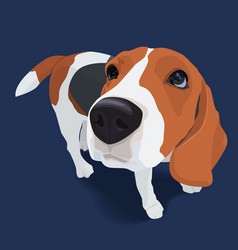 portrait of adorable beagle dog with shadow on vector image