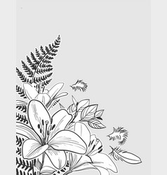 Sketch flower background card lily fern vector