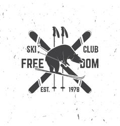 Ski club concept with bear vector
