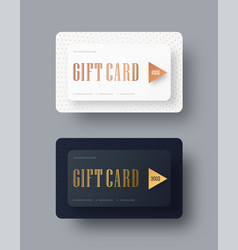 template of classical strict gift cards with vector image