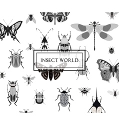 Monochrome butterfly and bug seamless pattern vector image