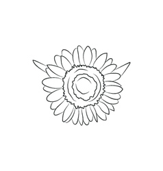 Beautiful sunflower flower simple black lined icon vector