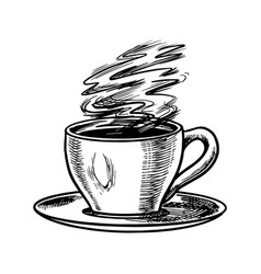 cup coffee in vintage style cappuccino in a vector image