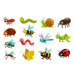 Cute bugs and insects cartoon characters vector