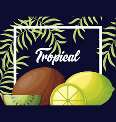 fresh lemons and kiwis tropical fruits vector image