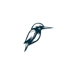 Kingfisher bird logo vector