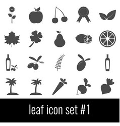 leaf icon set 1 gray icons on white background vector image