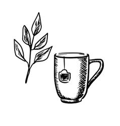 Sketch mug with tea leaves vector image