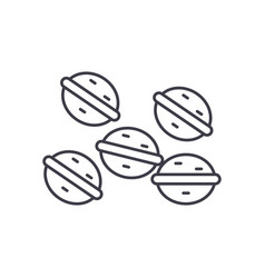 sweet nuts line icon concept sweet nuts vector image