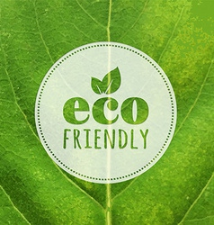 Eco label with leaf texture vector