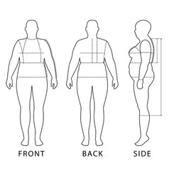 outlined standing woman vector image vector image