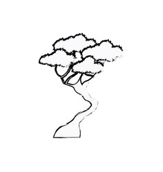 Bonsay tree oriental season nature branch sketch vector
