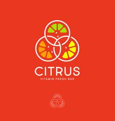 Citrus logo detox juice piece lemon orange vector