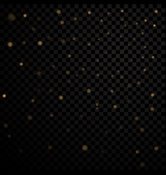 gold light stars on black background vector image