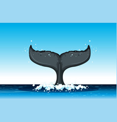 humpback whale tail in ocean vector image