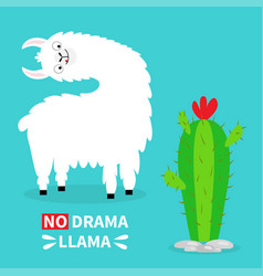 llama alpaca turning head face tongue no drama vector image