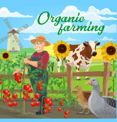 organic farming food and farmer agriculture vector image