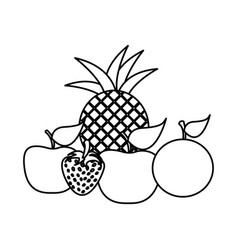 silhouette still life fruits icon food vector image