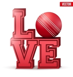 Love cricket inscription vector image