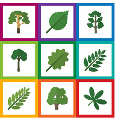 flat icon bio set of linden leaves maple and vector image