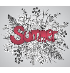 Graphic flowers and herbs with text Summer vector image