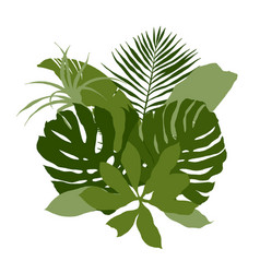 Green composition with plain tropical leaves vector