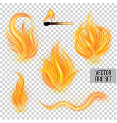 Painted transparent fire on a transparent vector