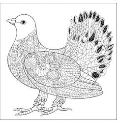 Pigeon doodle vector