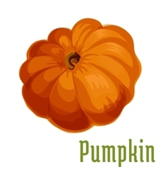Pumpkin vegetable plant icon vector
