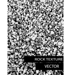 Rock background texture vector
