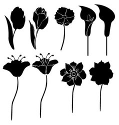 silhouettes of flowers 3 vector image